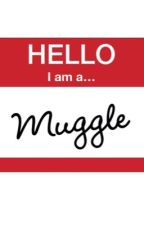 Muggle in a Wizard's World by DrJohnHolmes