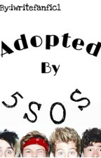Adopted By 5SoS? by aynsleewrites