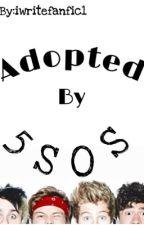 Adopted By 5SoS? by aynsleewrites