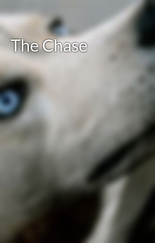 The Chase by Midnight_Wolf
