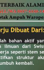 NOMOR SATU DI INDONESIA, CALL/WA 0857-5550-1411, Obat Anti Botak Waropen Papua by agenpelebatbiak
