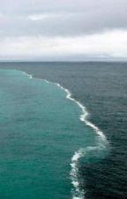 It begins (The Ocean's Twins) by Shieldfansunite