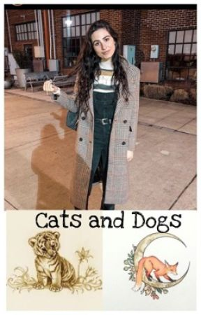 Cats and Dogs (Lauren Cimorelli and Y/N fan fic) by tiger17796