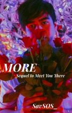 More | Sequel to Meet You There by SavSOS_