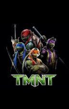 Teenage Mutant Ninja Turtles (2014) rewrite by AnimalX23