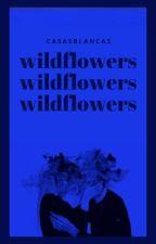 WILDFLOWERS ⋆ sokka {atla} by casasblancas