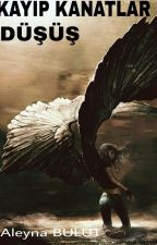 Kayıp Kanatlar 2: Düşüş by mrsbrownstone
