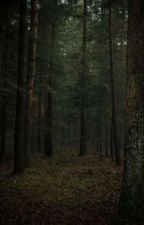 In The Woods Somewhere by coffee_x_kisses