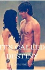 It's Called Destiny (Zanessa FanFiction) ON HOLD by SimpleVagabond