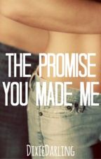 The Promise You Made Me [DISCONTINUED UNTIL FARTHER NOTICE] by DixieDarling