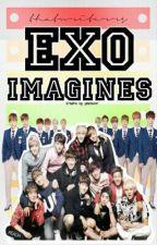 EXO Imagines by thatwriterr