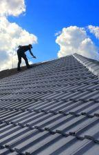 Commercial Roofer in Mobile AL by harryoscar090