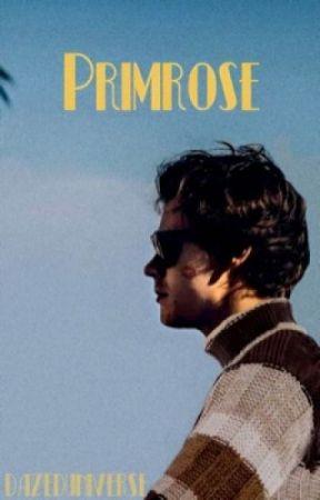Primrose. // H.S. by dazeduniverse