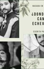 ¿Quien es Camilo Echeverry? by miaupie55