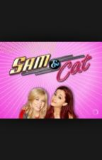 Sam and cat: The Movie by breannamicky