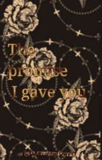 The Promise by Outofcontrolshipper