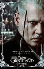 It's for the greater good (grindelwald × reader) by Karo_k1