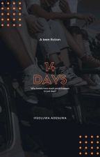 14 Days by vilalove09