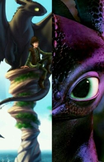 The Mysterious One (A How to train your Dragon FanFiction)