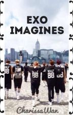 Exo Imagines [ open for requests ] by xobaekchenxo