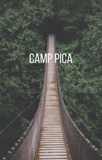 Camp Pica. (A Skylox Fanfiction)