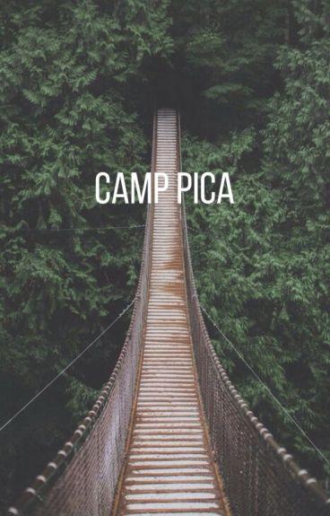 Camp Pica. (A Skylox Fanfiction)