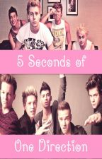 5 Seconds of One Direction (1. Sezona) by NelaIrwin