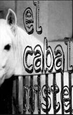 un caballo misterioso by marina_horse