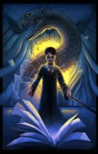 My life as Harry Potter  by outcat1234