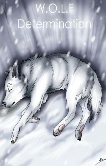 W.O.L.F. Determination , Part 1 : le loup blanc de l'alpe gelé