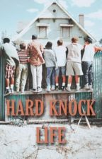 hard knock life ◇ sandlot  by sxndlot