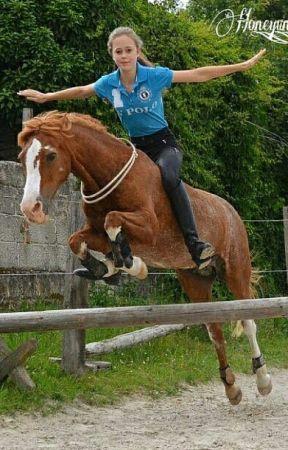 Probleme eines Reiters by PersieBee