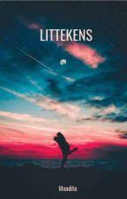 Littekens - Una historia sobre Pokémon by mxndite