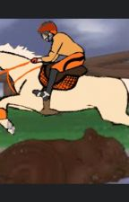 The secret Rider  by TsukkhinaShipper