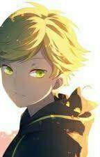 Destined (Cat Noir / Adrien X Reader) by aka_unknown_01