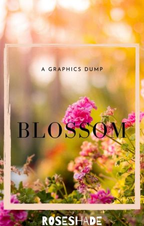 BLOSSOM  🙦  a graphics dump by roseshade-