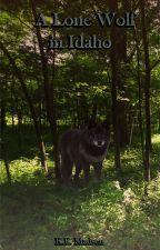 A Lone Wolf in Idaho by writinginadaydream