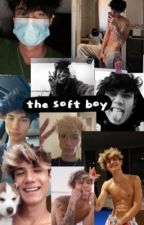 the soft boy ~ J.H.  by swypehousestories103
