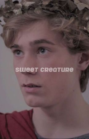 sweet creature ━━ timothée chalamet by aphroditetears