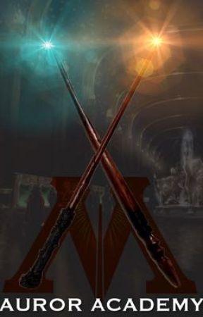 Auror Academy by gryffindormystery