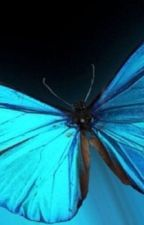 Butterfly Wings (An Owl City FanFiction) by ChasingRainbowsAlone
