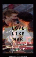 A Love Like War - Cake 5SOS by babycakesandboobear