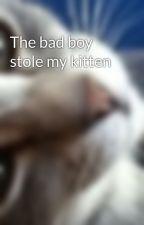 The bad boy stole my kitten by sparklediamond12