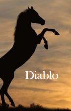 Diablo - (M)eine Pferdegeschichte by TabbySammy