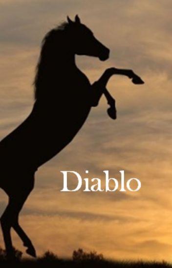 Diablo - (M)eine Pferdegeschichte
