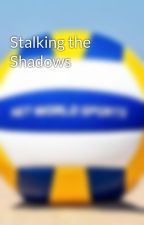 Stalking the Shadows by Volleyball_Legend_2