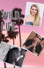 Wild life- Aaron Carpenter by imaginesmagconx