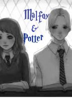 Malfoy and Potter [Harry Potter](Scorily Fanfiction) by BreLovesTigers