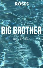 BIG BROTHER, apply fic by Rosebud_Fields