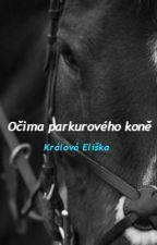 Očima parkurového koně by Equestrian-Eliss